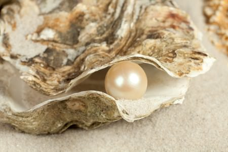 Oysters are how are pearls formed