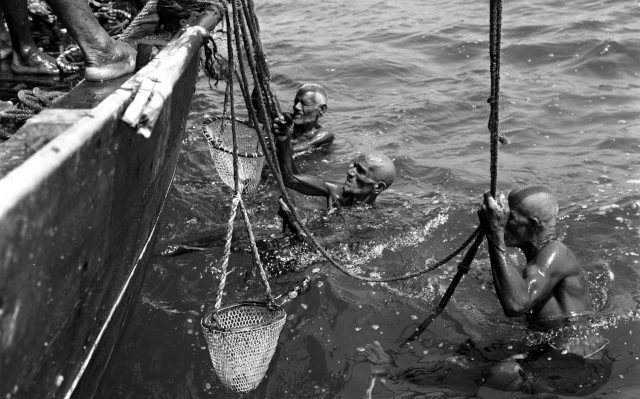 Bahrain pearl divers shave their heads, grease their bodies and use ropes and baskets to dive for natural pearls.