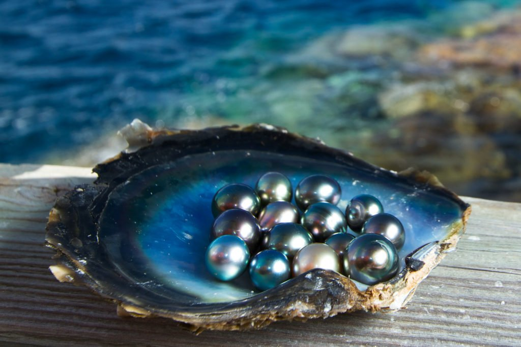 Eco-Friendly Pearl Farming