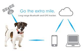 Valentine's Day Gifts for Men: He can use StickNFind to locate his keys, wallet, dog and more.