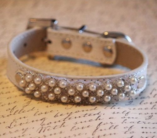 Pets and Pearls: Pearl Dog Collar