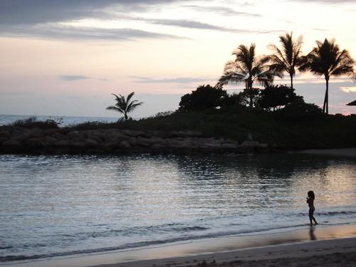Hawaii Family Beach